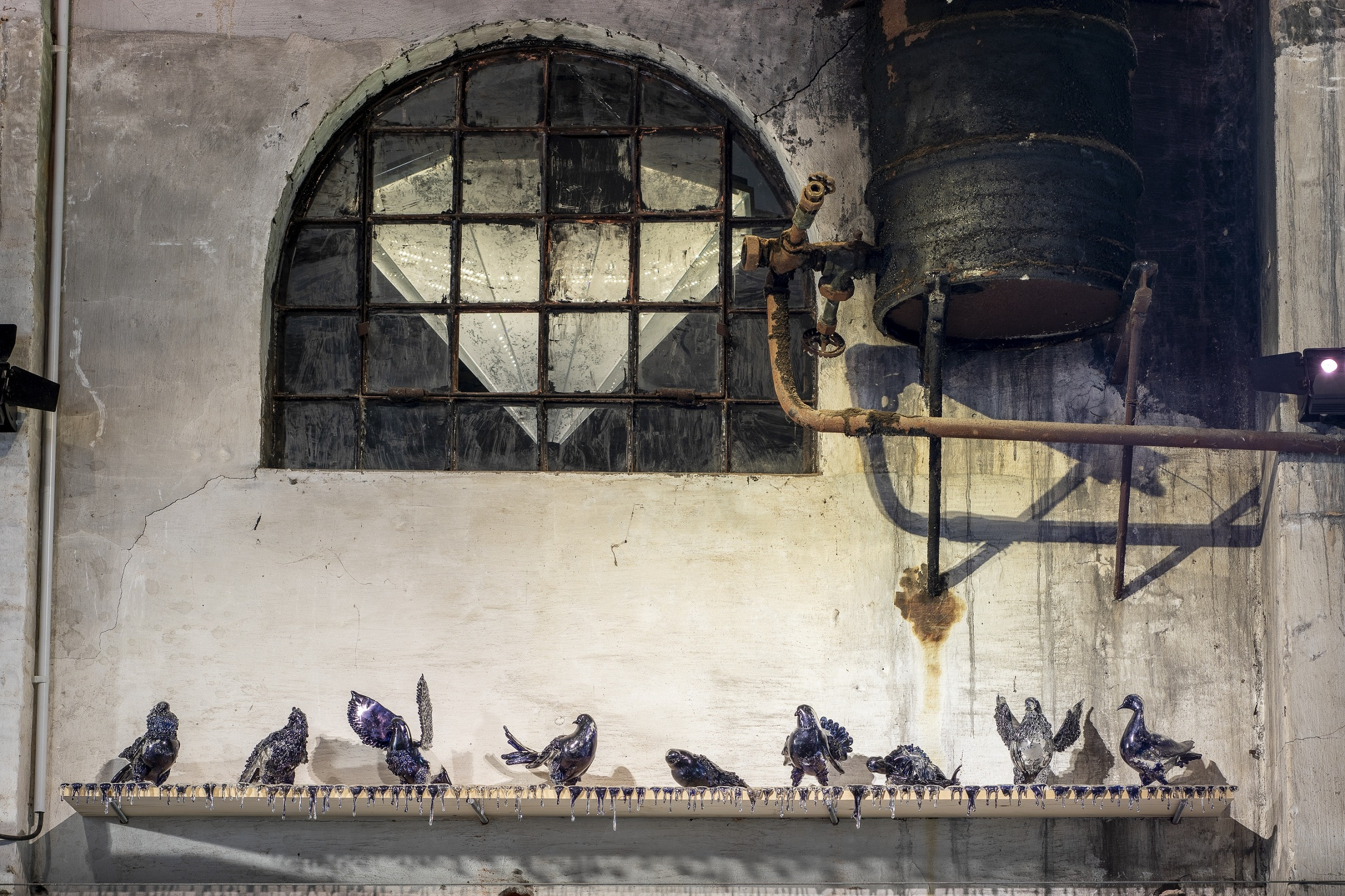 Jan Fabre, Shitting doves of peace and flying rats - photo