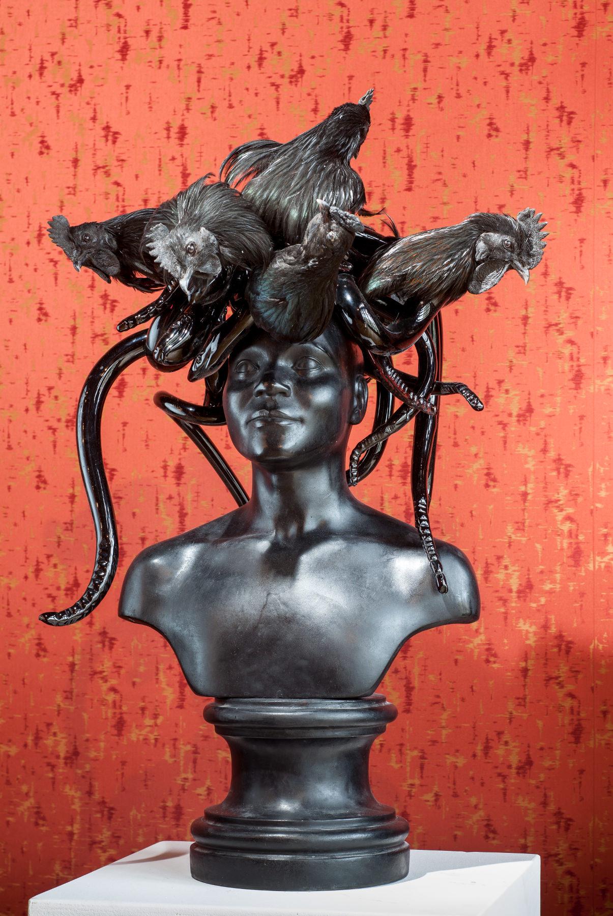 Koen Vanmechelen - Black Medusa
