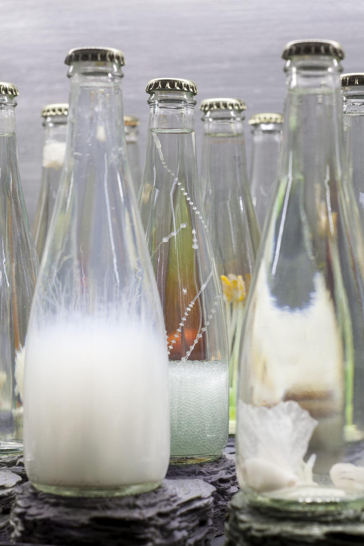 Hila Amram - Still Glass